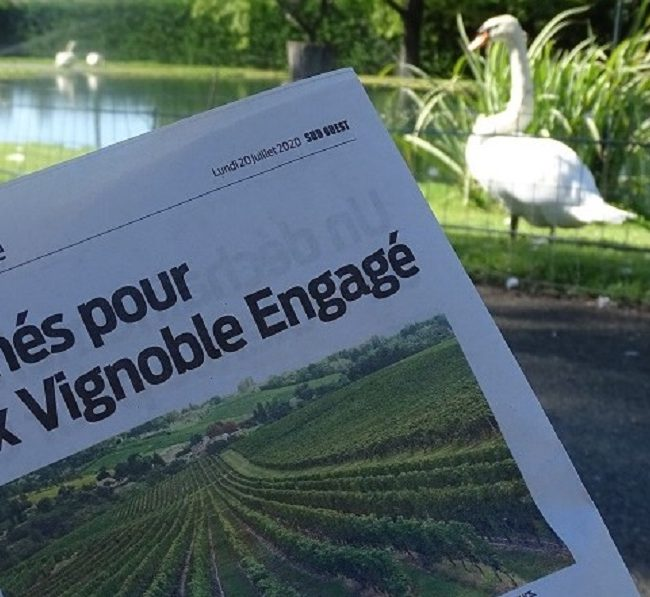vignoble engagé chateau l'inclassable