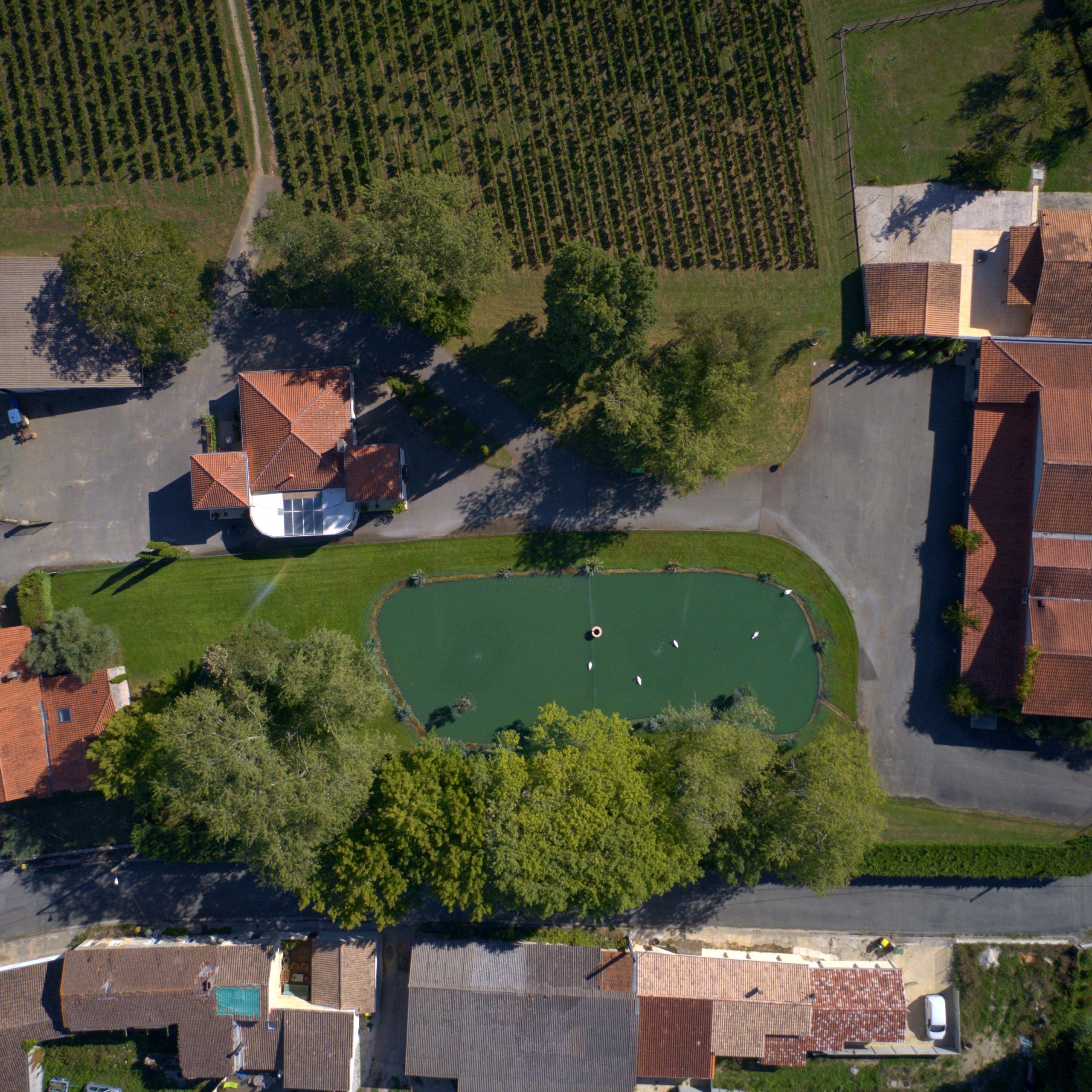 chateau vu du ciel étang vignes drone